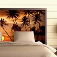 Sunset Palm Tree Dry-erase Furniture Decal