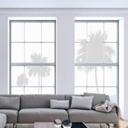 Palm Trees frosted window decals