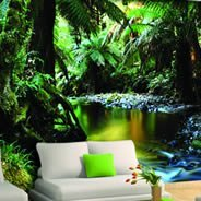 Tropical Jungle wall murals