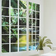 Jungle Forest see through window decals