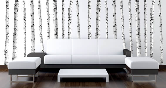 White Birch Trees Wall Decal