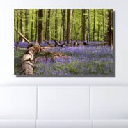 Wild Lavender digital photo canvas