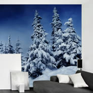 Snow Moon Winter Night wall murals