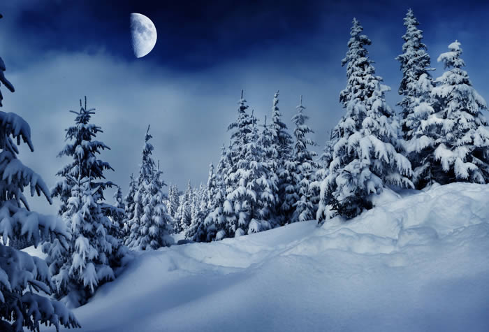 Snow Moon Winter Night Wall Murals Part 94