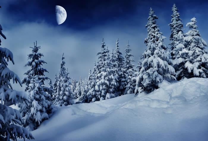 Snow Moon Winter Night wall murals