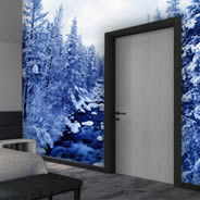 Winter Rivers wall murals