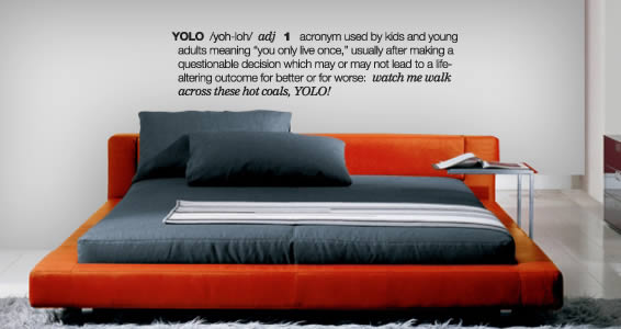 YOLO wall decals quotes