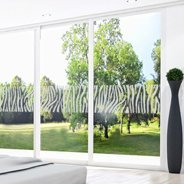 Zebra Print frosted window decals
