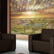 Savannah Zebras Jungle - window see through decals