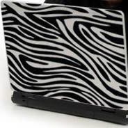 Zebra laptop decals skin