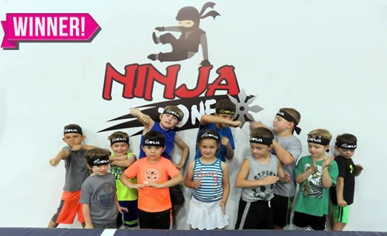 ninja team decal